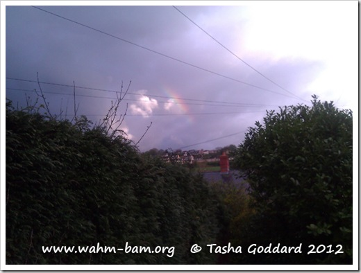 Look for a rainbow (www.wahm-bam.org © Tasha Goddard 2012)